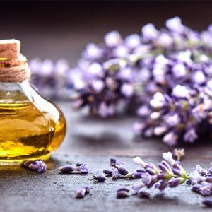Organic Essential Oil Blends